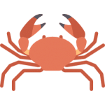 illustration d'un crabe